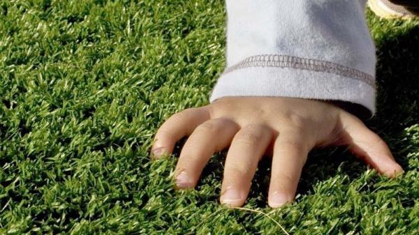 Искусственная трава Evergreen
