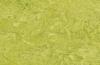 Натуральный линолеум chartreuse 3224
